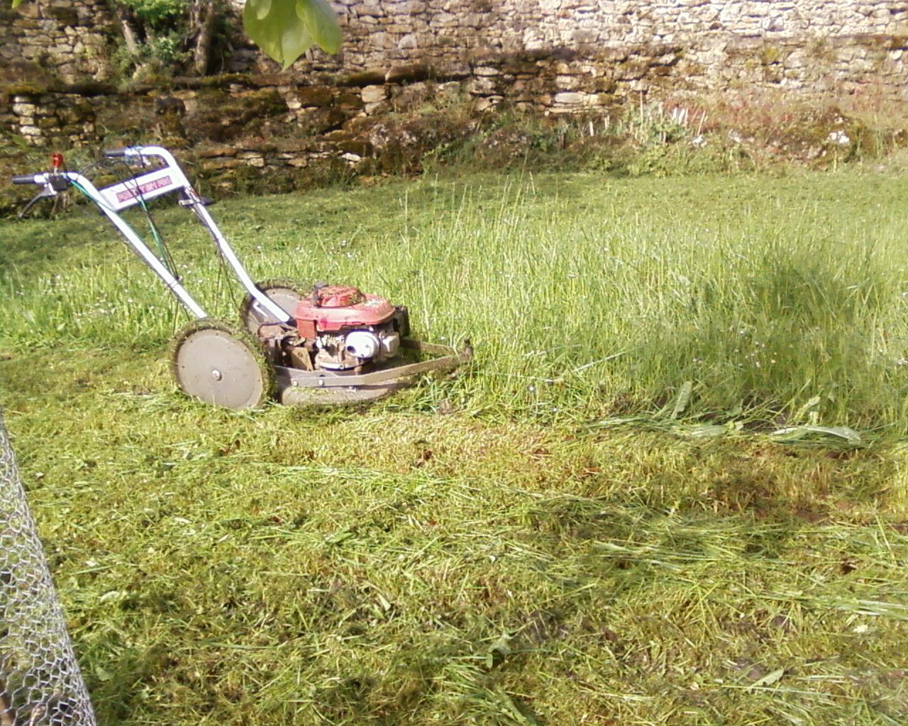 Parc et jardin tonte pelouse taille haie d brousaillage for Nettoyage jardin 78
